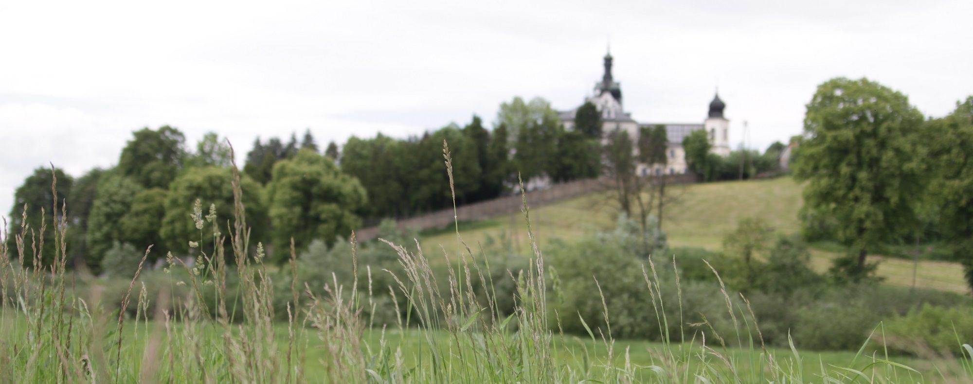 Tuchów-widok
